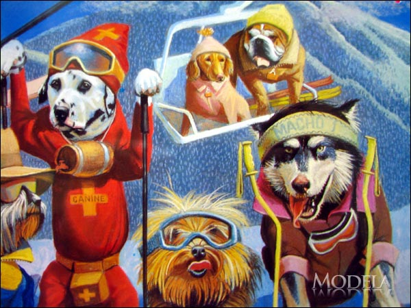 犬たちのスキー